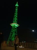Grüne Woche - Green Week Berlin 2016 (134)